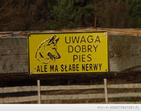 Przekonujące ostrzeżenie –