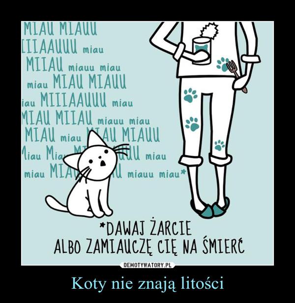Koty nie znają litości –