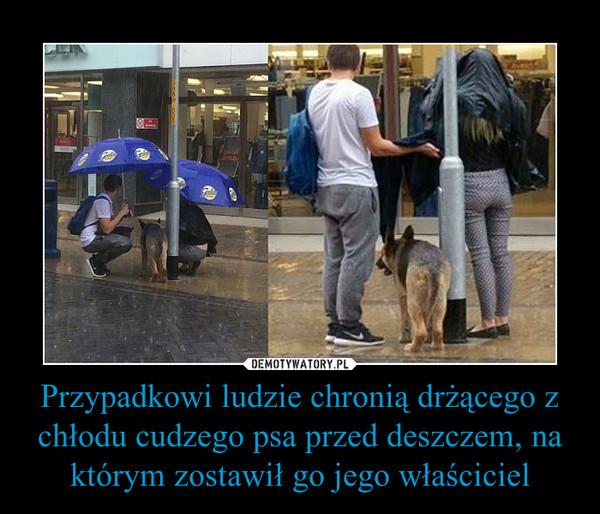 Przypadkowi ludzie chronią drżącego z chłodu cudzego psa przed deszczem, na którym zostawił go jego właściciel –