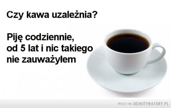 Czy kawa uzależnia? –