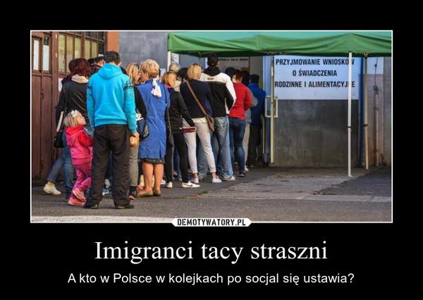 Imigranci tacy straszni – A kto w Polsce w kolejkach po socjal się ustawia?