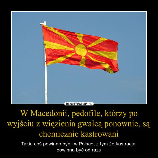 W Macedonii, pedofile, którzy po wyjściu z więzienia gwałcą ponownie, są chemicznie kastrowani – Takie coś powinno być i w Polsce, z tym że kastracja powinna być od razu