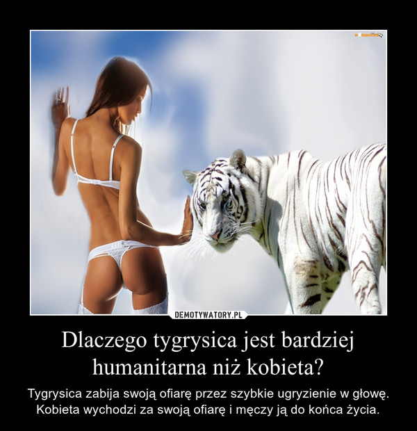 Dlaczego tygrysica jest bardziej humanitarna niż kobieta? – Tygrysica zabija swoją ofiarę przez szybkie ugryzienie w głowę. Kobieta wychodzi za swoją ofiarę i męczy ją do końca życia.