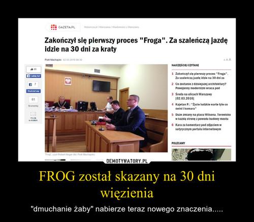 FROG został skazany na 30 dni więzienia