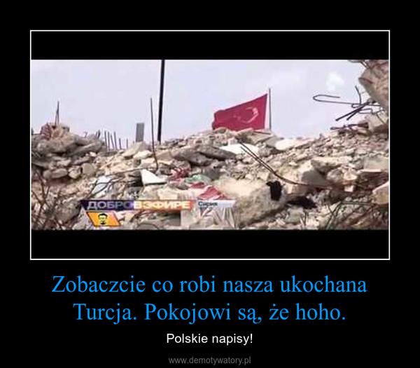 Zobaczcie co robi nasza ukochana Turcja. Pokojowi są, że hoho. – Polskie napisy!