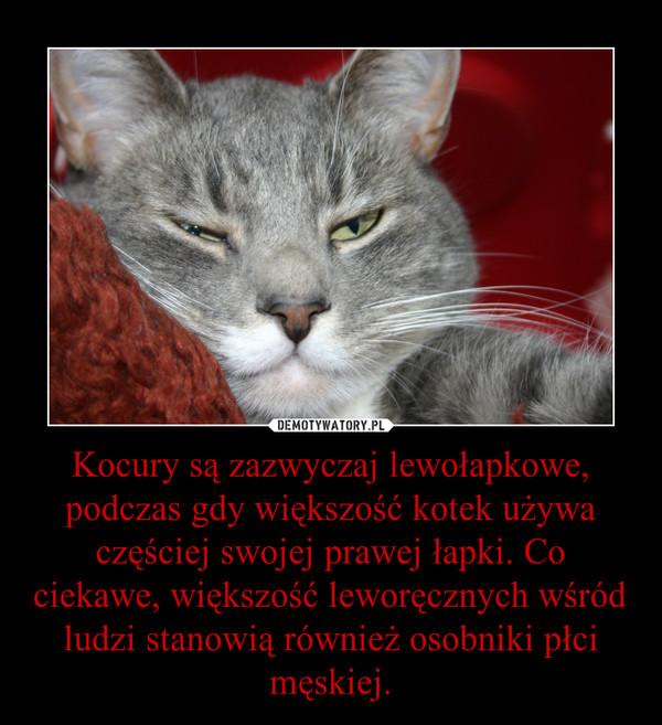 Kocury są zazwyczaj lewołapkowe, podczas gdy większość kotek używa częściej swojej prawej łapki. Co ciekawe, większość leworęcznych wśród ludzi stanowią również osobniki płci męskiej. –