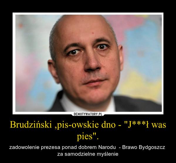 """Brudziński ,pis-owskie dno - """"J***ł was pies"""". – zadowolenie prezesa ponad dobrem Narodu  - Brawo Bydgoszcz  za samodzielne myślenie"""