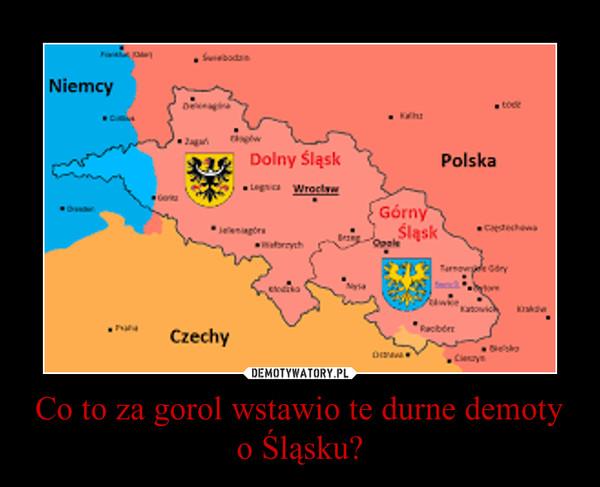Co to za gorol wstawio te durne demoty o Śląsku? –