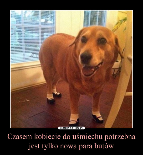 Czasem kobiecie do uśmiechu potrzebna jest tylko nowa para butów –