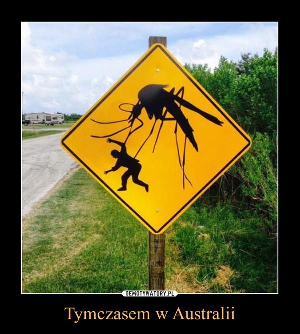 Tymczasem w Australii –