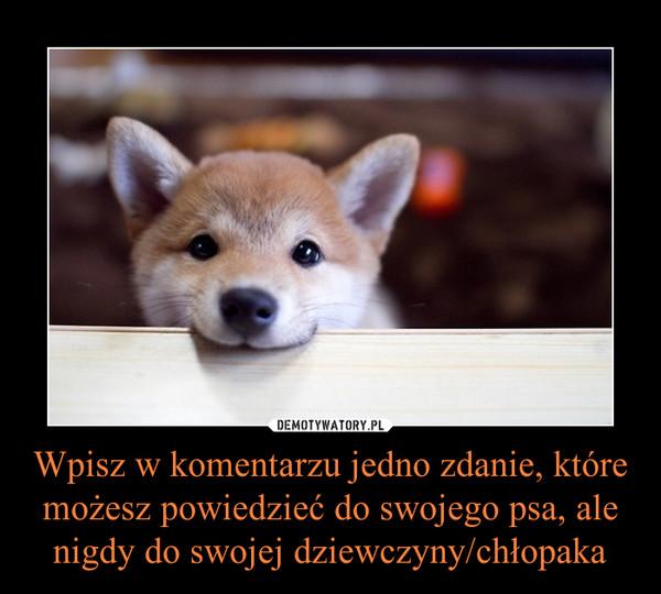 Wpisz w komentarzu jedno zdanie, które możesz powiedzieć do swojego psa, ale nigdy do swojej dziewczyny/chłopaka –