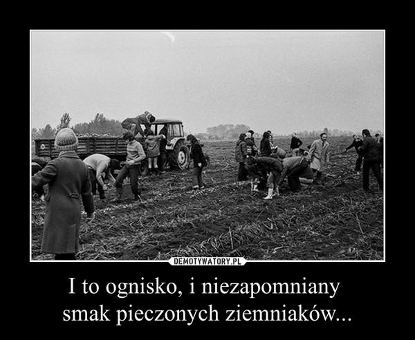 I to ognisko, i niezapomniany smak pieczonych ziemniaków... –
