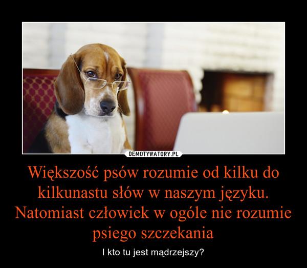 Większość psów rozumie od kilku do kilkunastu słów w naszym języku. Natomiast człowiek w ogóle nie rozumie psiego szczekania – I kto tu jest mądrzejszy?