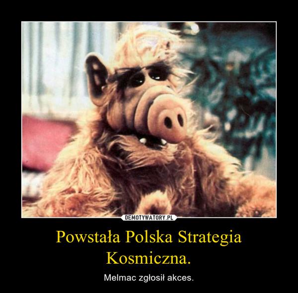 Powstała Polska Strategia Kosmiczna. – Melmac zgłosił akces.