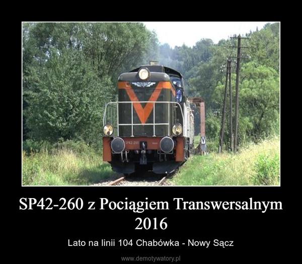 SP42-260 z Pociągiem Transwersalnym 2016 – Lato na linii 104 Chabówka - Nowy Sącz