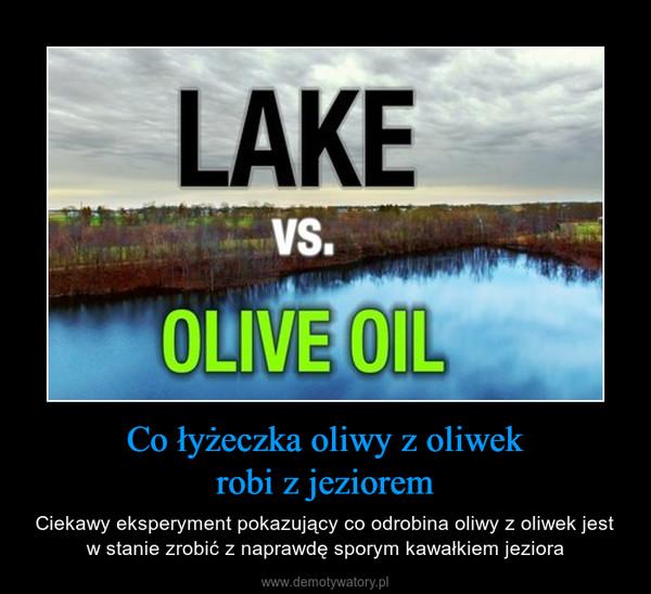 Co łyżeczka oliwy z oliwekrobi z jeziorem – Ciekawy eksperyment pokazujący co odrobina oliwy z oliwek jest w stanie zrobić z naprawdę sporym kawałkiem jeziora