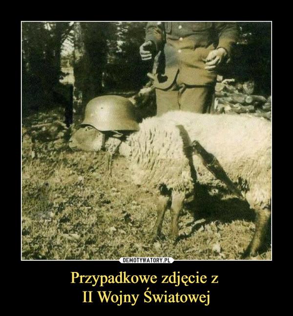 Przypadkowe zdjęcie z II Wojny Światowej –