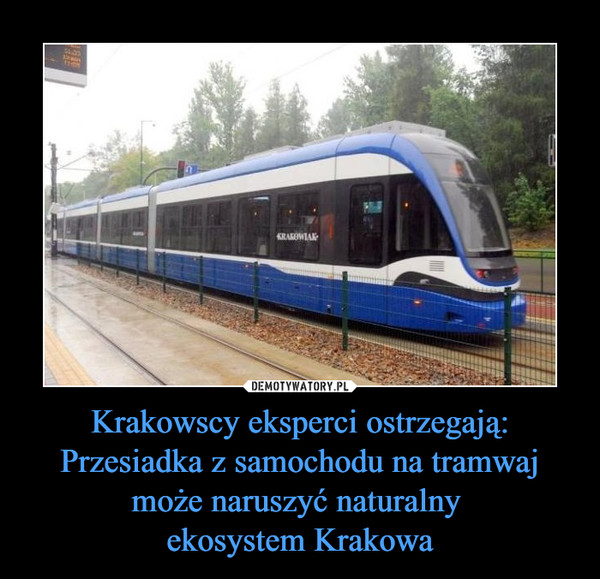 Krakowscy eksperci ostrzegają:Przesiadka z samochodu na tramwaj może naruszyć naturalny ekosystem Krakowa –