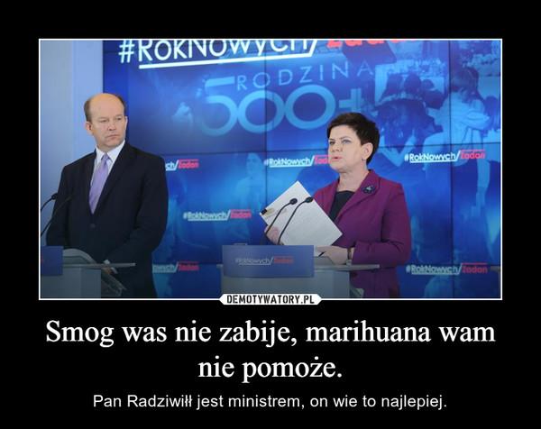 Smog was nie zabije, marihuana wam nie pomoże. – Pan Radziwiłł jest ministrem, on wie to najlepiej.