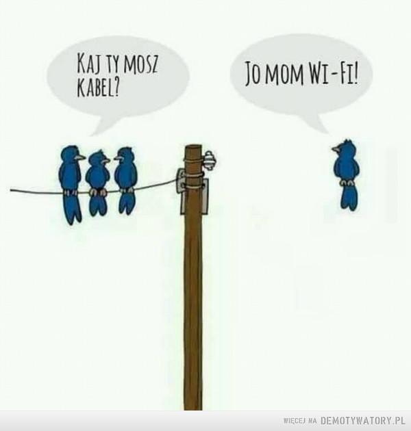 Technologia –  kaj ty mosz kabel jo mom wi-fi