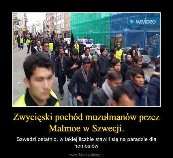 Zwycięski pochód muzułmanów przez Malmoe w Szwecji. – Szwedzi ostatnio, w takiej liczbie stawili się na paradzie dla homosiów