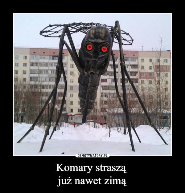 Komary straszą już nawet zimą –