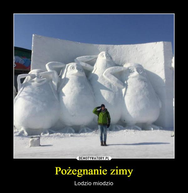 Pożegnanie zimy – Lodzio miodzio