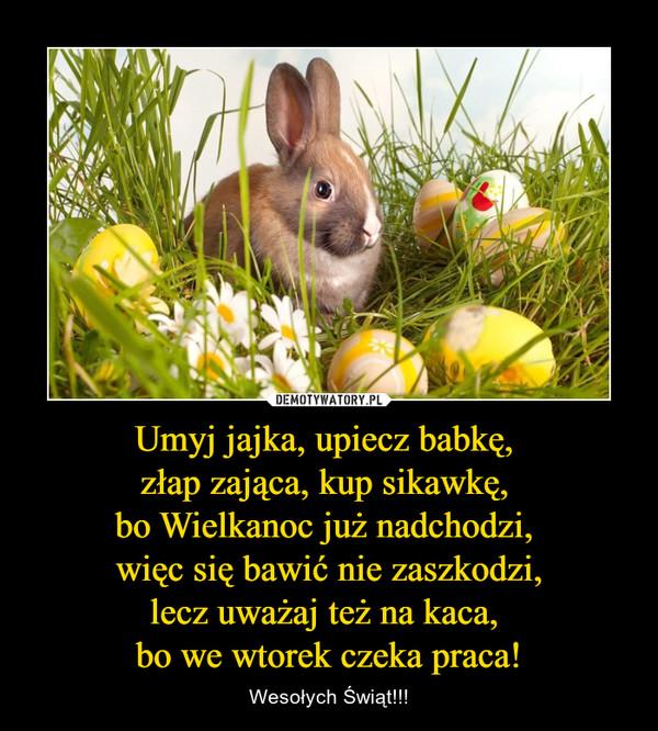 Umyj jajka, upiecz babkę, złap zająca, kup sikawkę, bo Wielkanoc już nadchodzi, więc się bawić nie zaszkodzi,lecz uważaj też na kaca, bo we wtorek czeka praca! – Wesołych Świąt!!!
