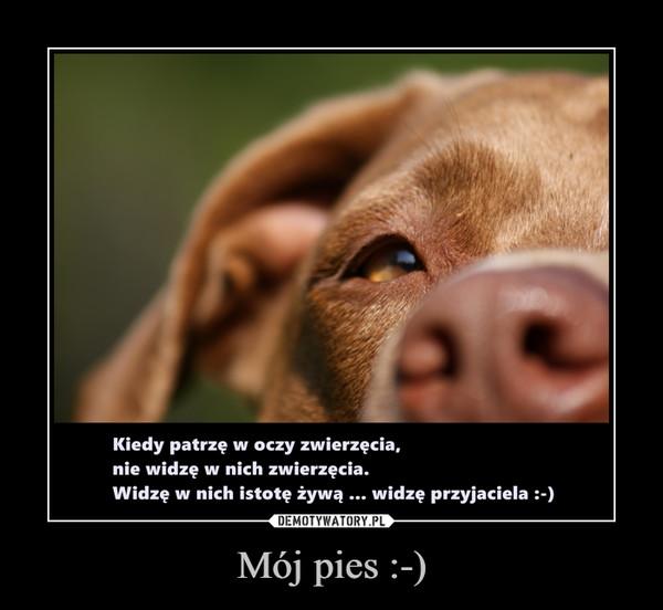 Mój pies :-) –