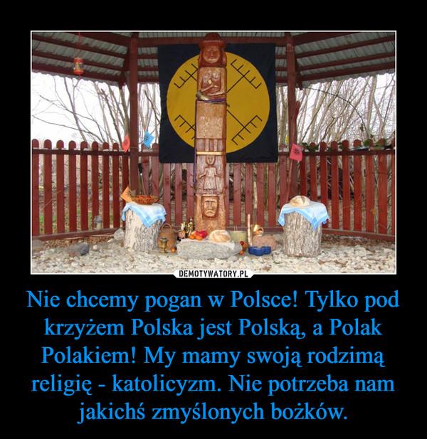 Nie chcemy pogan w Polsce! Tylko pod krzyżem Polska jest Polską, a Polak Polakiem! My mamy swoją rodzimą religię - katolicyzm. Nie potrzeba nam jakichś zmyślonych bożków. –