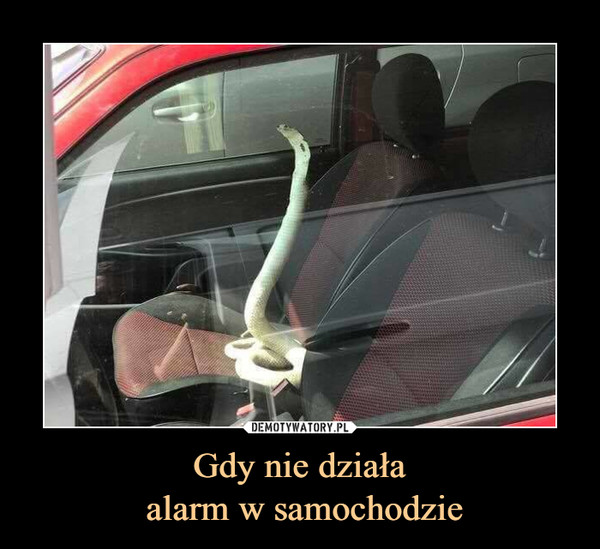 Gdy nie działa alarm w samochodzie –