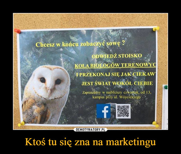 Ktoś tu się zna na marketingu –