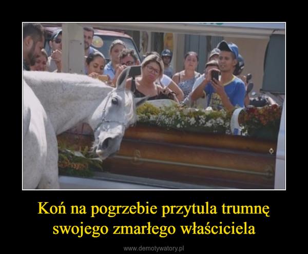 Koń na pogrzebie przytula trumnę swojego zmarłego właściciela –