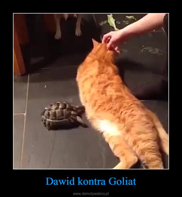 Dawid kontra Goliat –
