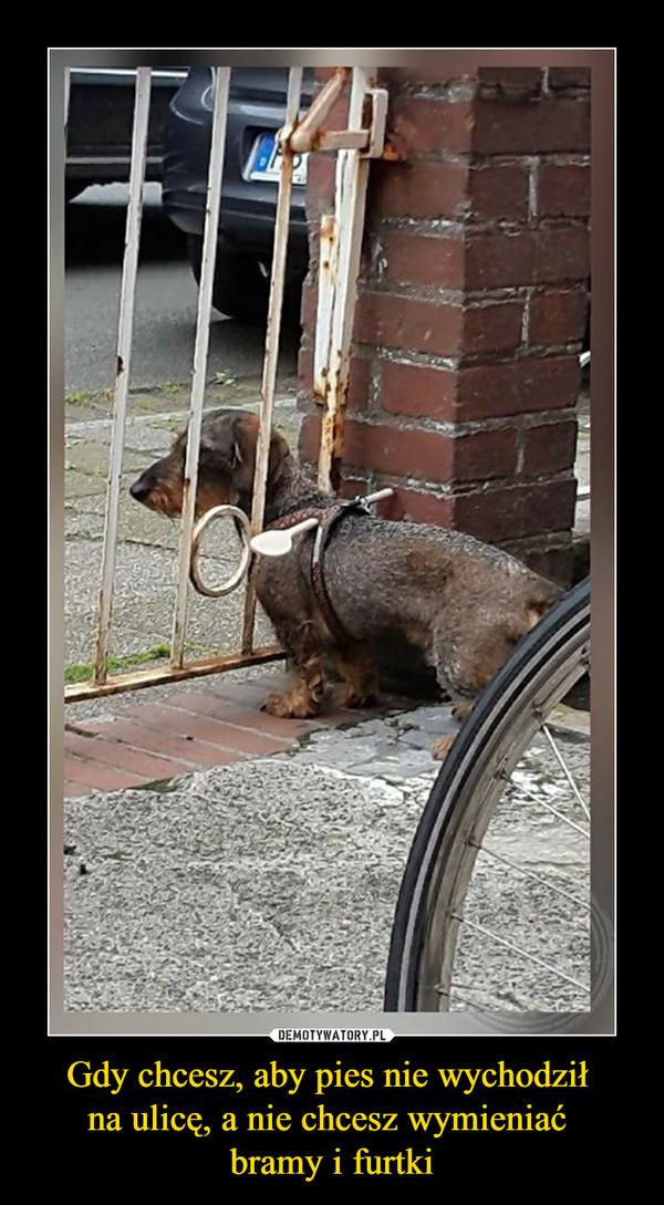 Gdy chcesz, aby pies nie wychodził na ulicę, a nie chcesz wymieniać bramy i furtki –