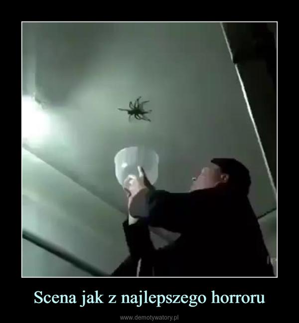 Scena jak z najlepszego horroru –