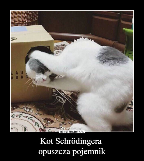 Kot Schrödingera opuszcza pojemnik –