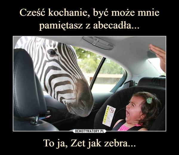 To ja, Zet jak zebra... –