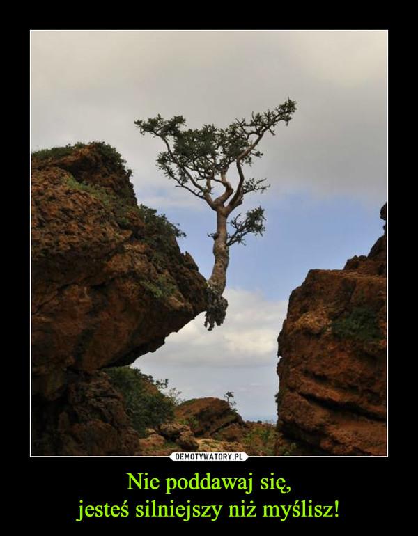 Nie poddawaj się,jesteś silniejszy niż myślisz! –