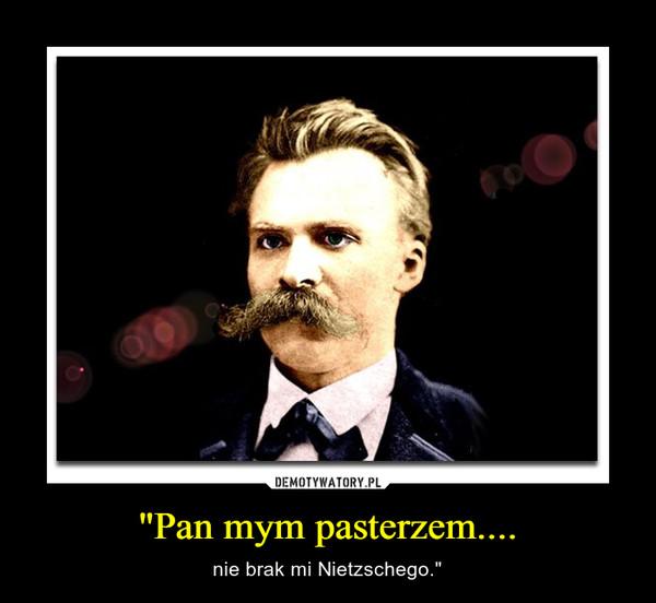 """Pan mym pasterzem.... – nie brak mi Nietzschego."""