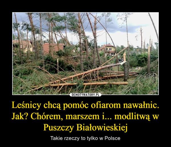 Leśnicy chcą pomóc ofiarom nawałnic. Jak? Chórem, marszem i... modlitwą w Puszczy Białowieskiej – Takie rzeczy to tylko w Polsce