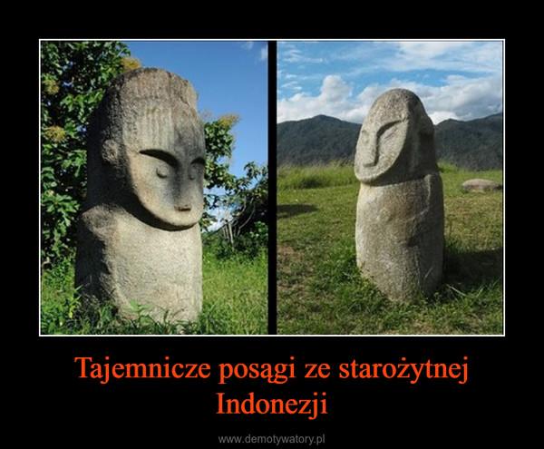 Tajemnicze posągi ze starożytnej Indonezji –