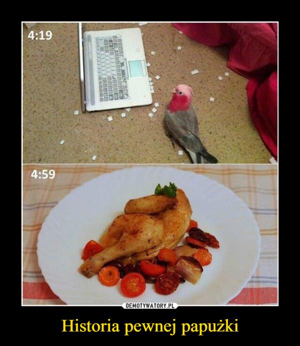 Historia pewnej papużki –