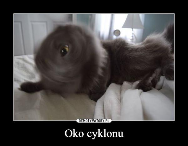 Oko cyklonu –