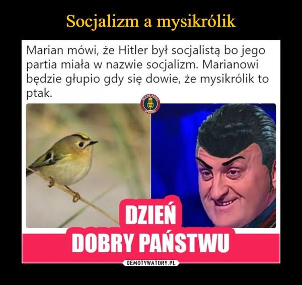 –  Marian mówi, że Hitler był socjalistą bo jego partia miała w nazwie socjalizm. Marianowi będzie głupio, gdy się dowie, że mysikrólik to ptak.dzień dobry państwu
