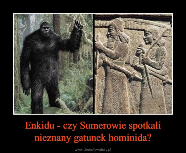 Enkidu - czy Sumerowie spotkali nieznany gatunek hominida? –