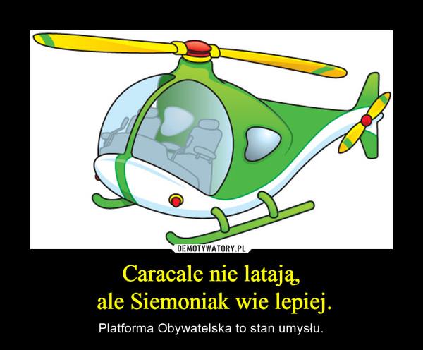 Caracale nie latają, ale Siemoniak wie lepiej. – Platforma Obywatelska to stan umysłu.