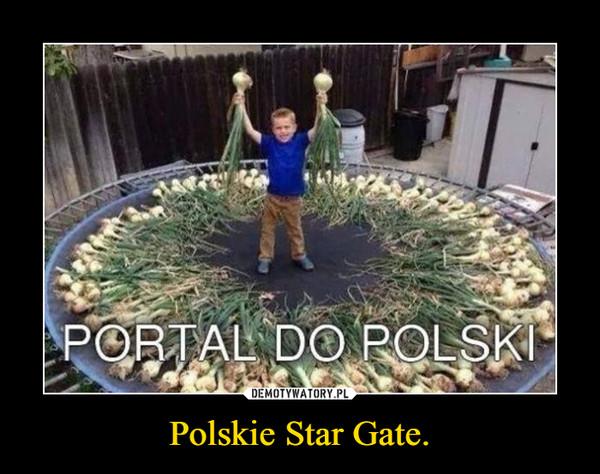 Polskie Star Gate.