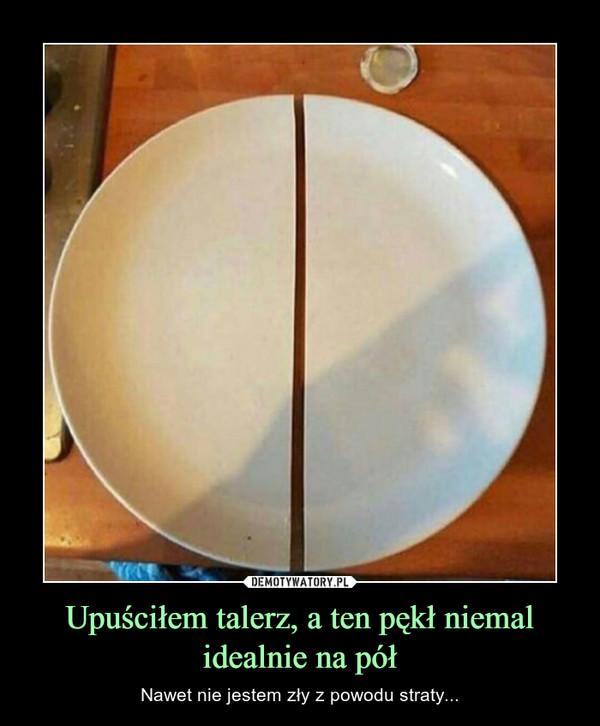 Upuściłem talerz, a ten pękł niemal idealnie na pół – Nawet nie jestem zły z powodu straty...