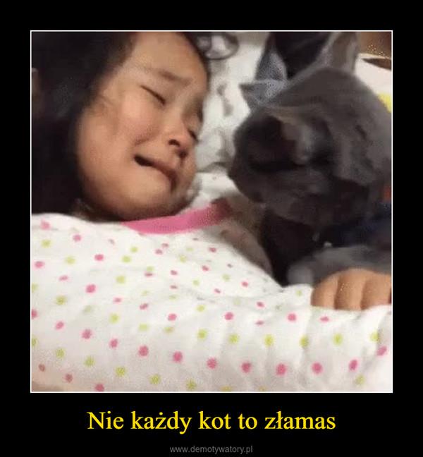Nie każdy kot to złamas –